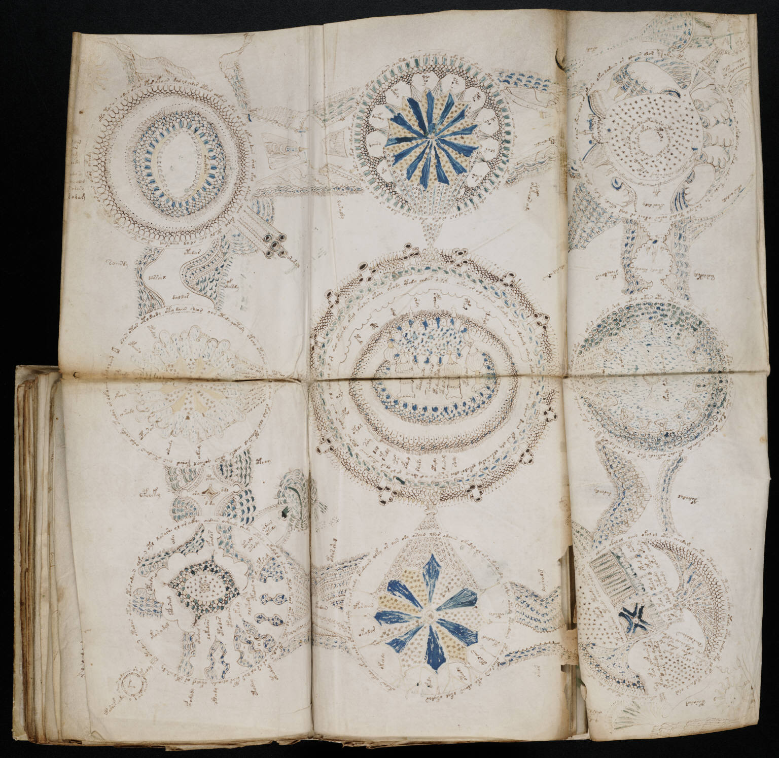 From the Voynich manuscript